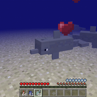 Dolphins Addon for Minecraft