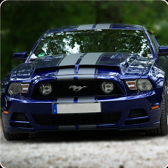 Mustang Sport Cars Wallpapers