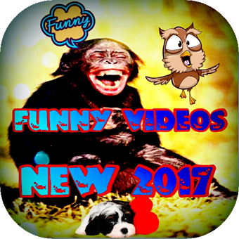 New Top Funny Videos